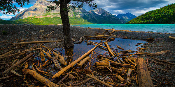 Waterton Tours